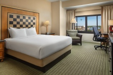 7. Hilton LBV - King DSprings View